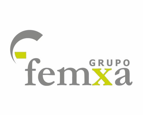 11-Grupo-Femxa