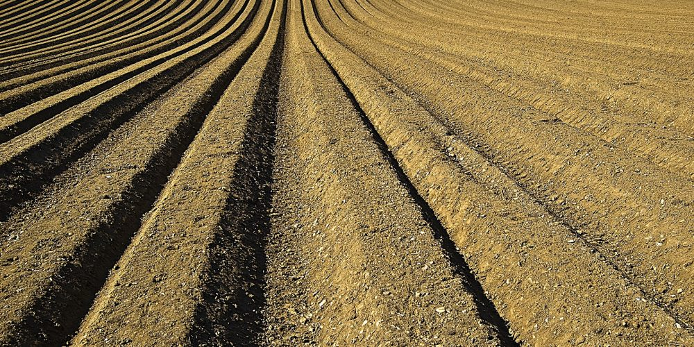 Chemical Fertilisers Market Opportunity Assessment in Romania