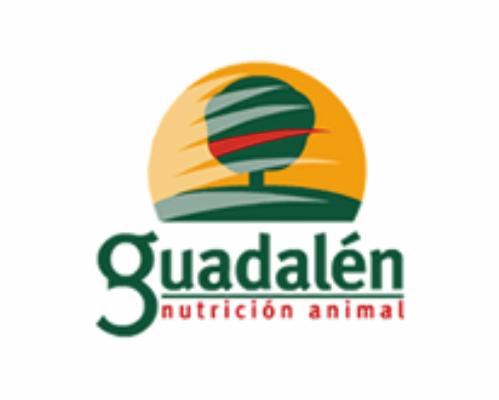 19-Guadalen